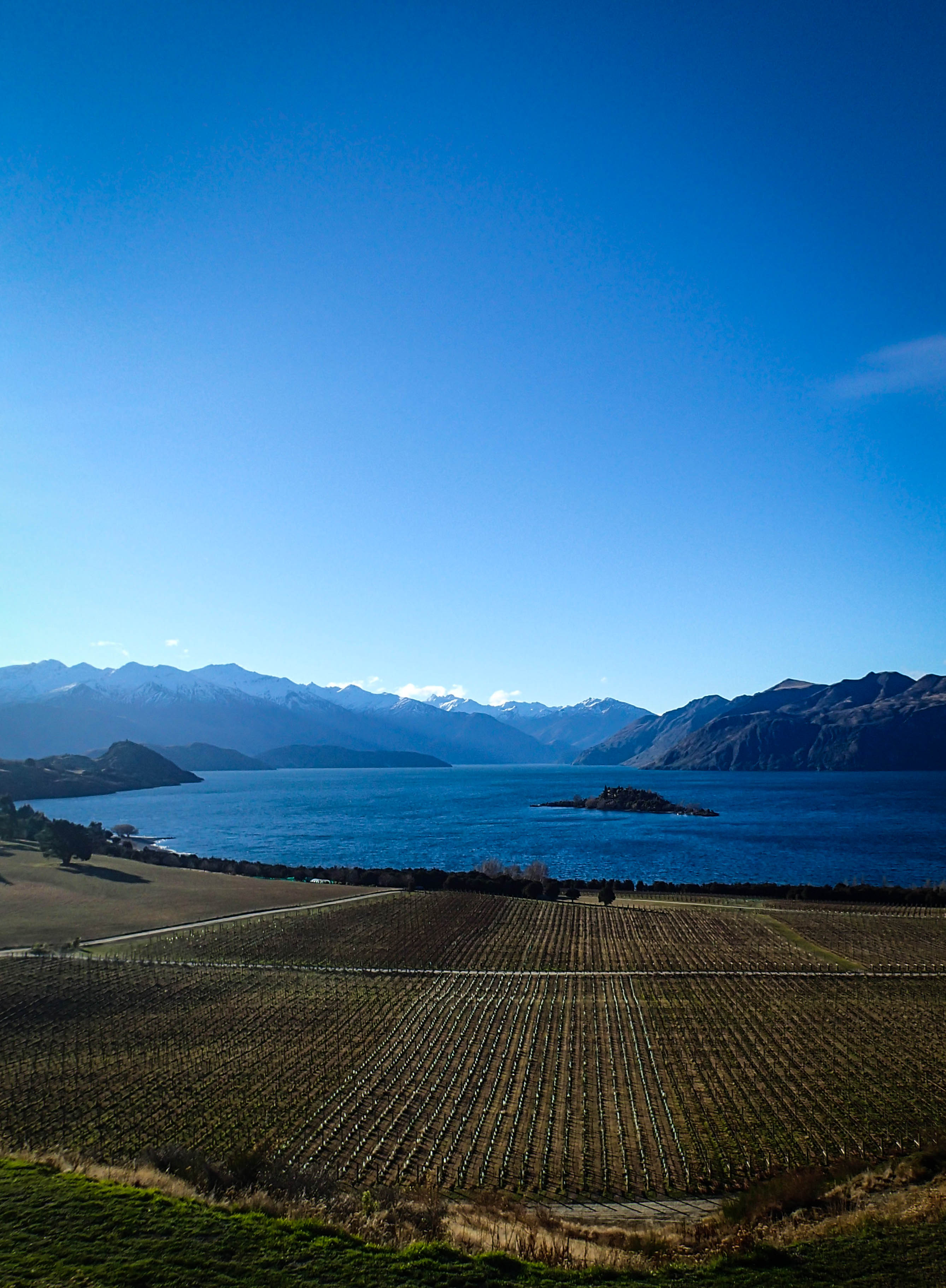 Lake Wanaka & Rippon Vineyard